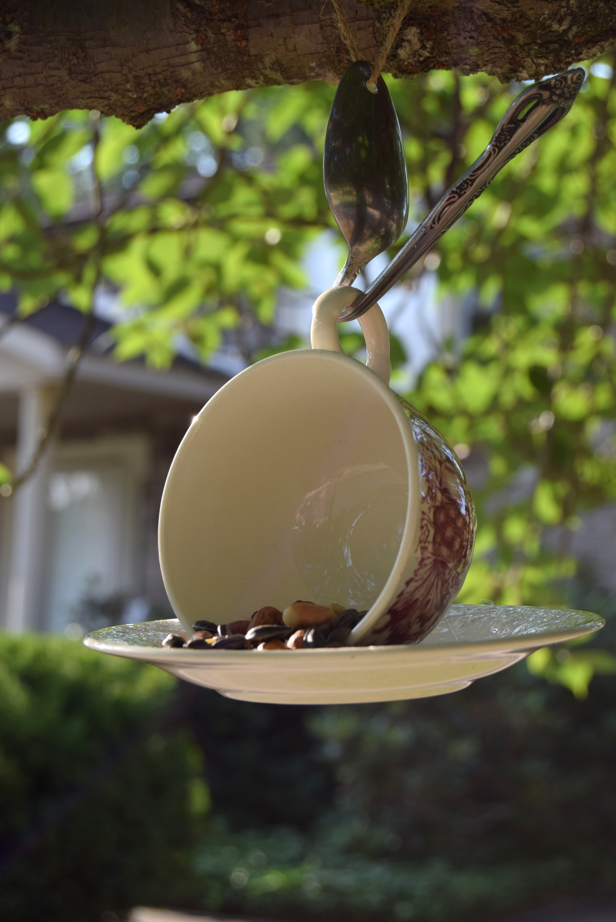 Courtney's hanging bird feeder made from a tea cup and saucer
