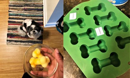 Goodwill Loves Dogs: DIY Dog Food with a $2 Mold