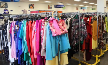 Event Recap: Goodwill Summer Style Exchange