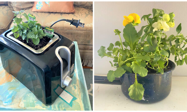 DIY: 6 Ways to Create Unique Planters From Upcycled Items