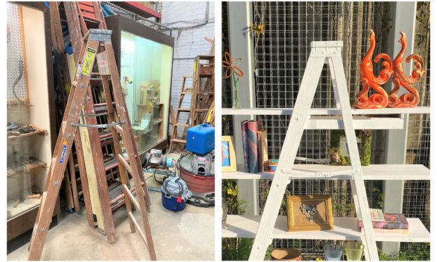 DIY Project: Step Up Your Upcycling Game by Transforming a Ladder Into Shelves