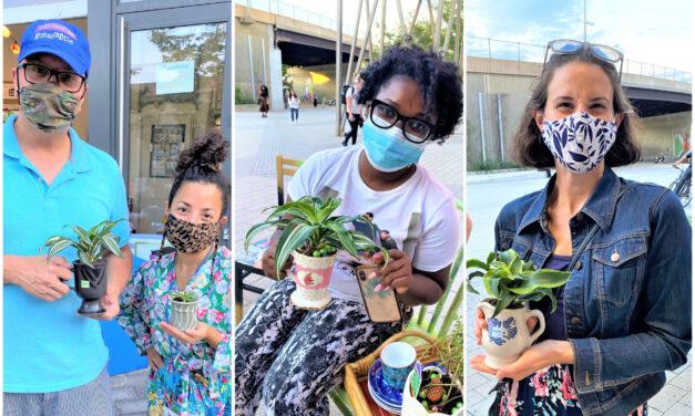 Event Recap & Tutorial: How to Host a DIY Planter Workshop & Plant Swap