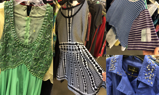 Vintage Glamour Finds & More at the Greenville, SC Goodwill